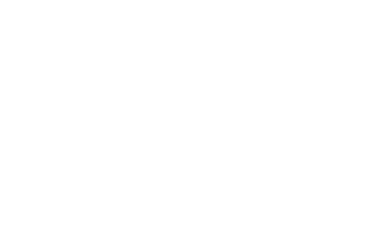 Salt and BUsh white logo